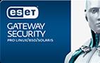 ESET ochrana gateway serverů